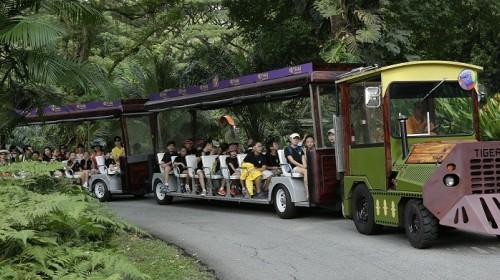 【佛山】新加坡日间动物园电子票-携程旅游度假